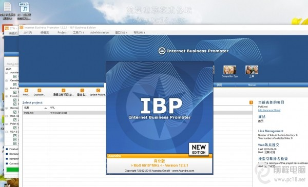 Internet Business Promoter(IBP)12.2最新汉化破解版